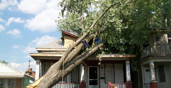 Storm Damage - Severe Storms