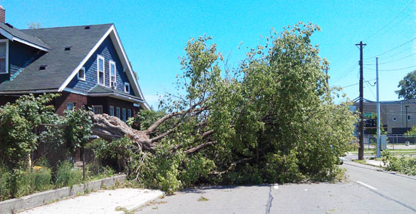 damage from Storms
