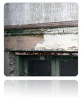 Specialty Services - Lead Damage Restoration