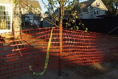 Building Security - Emergency Fencing